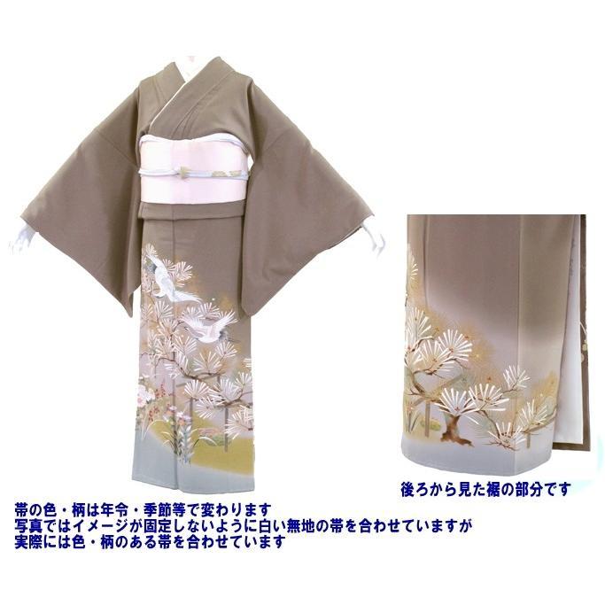 色留袖 レンタル 711番 20点フルセットレンタル 往復送料無料|kimono-world|02