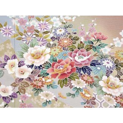 色留袖 レンタル 723番 20点フルセットレンタル 往復送料無料|kimono-world|05