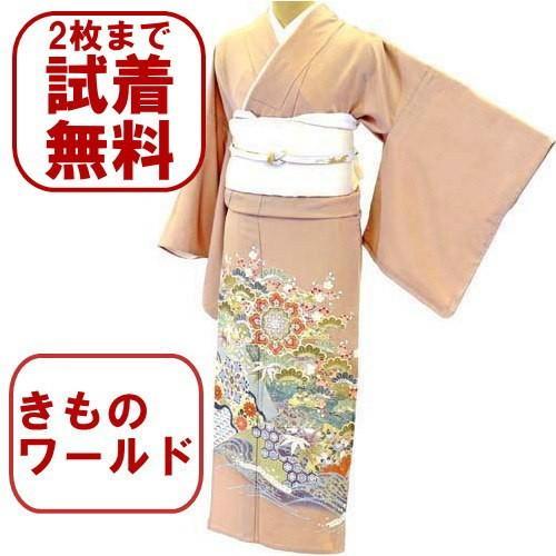 色留袖 レンタル 731番 20点フルセットレンタル 往復送料無料|kimono-world