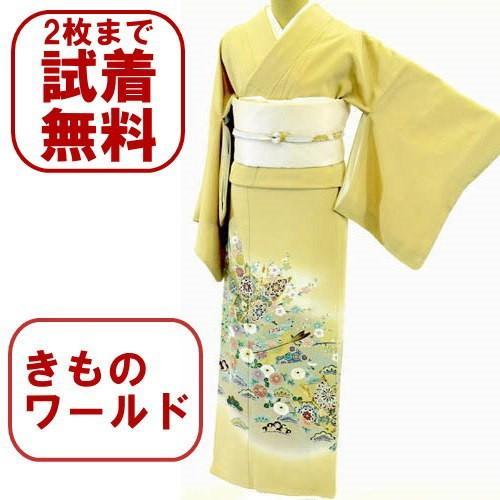 色留袖 レンタル 733番 20点フルセットレンタル 往復送料無料|kimono-world