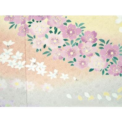 色留袖 レンタル 753番 20点フルセットレンタル 往復送料無料|kimono-world|05