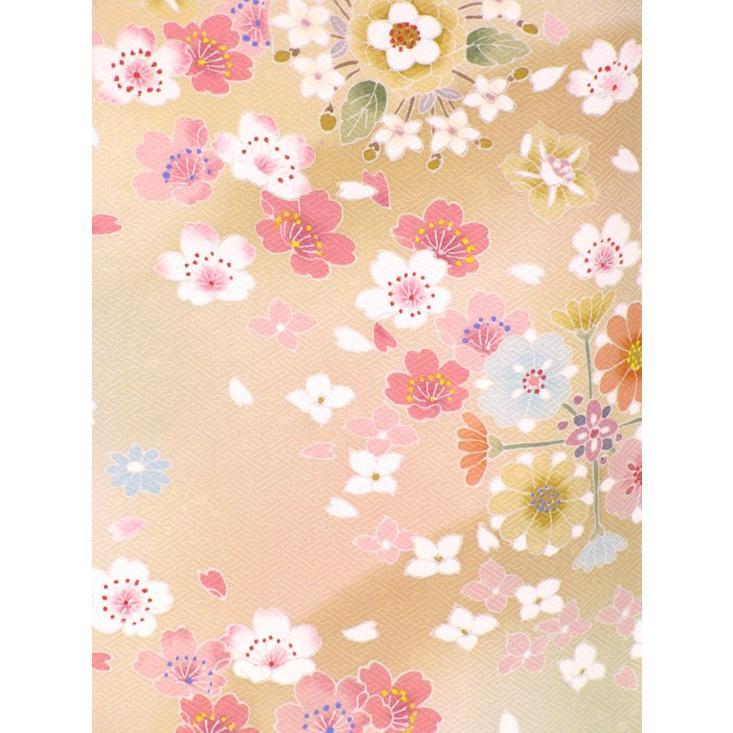 色留袖 レンタル 756番 20点フルセットレンタル 往復送料無料|kimono-world|06