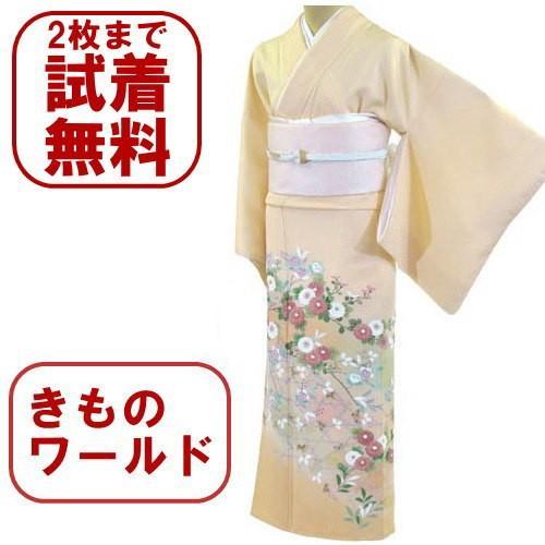 色留袖 レンタル 765番 20点フルセットレンタル 往復送料無料 kimono-world