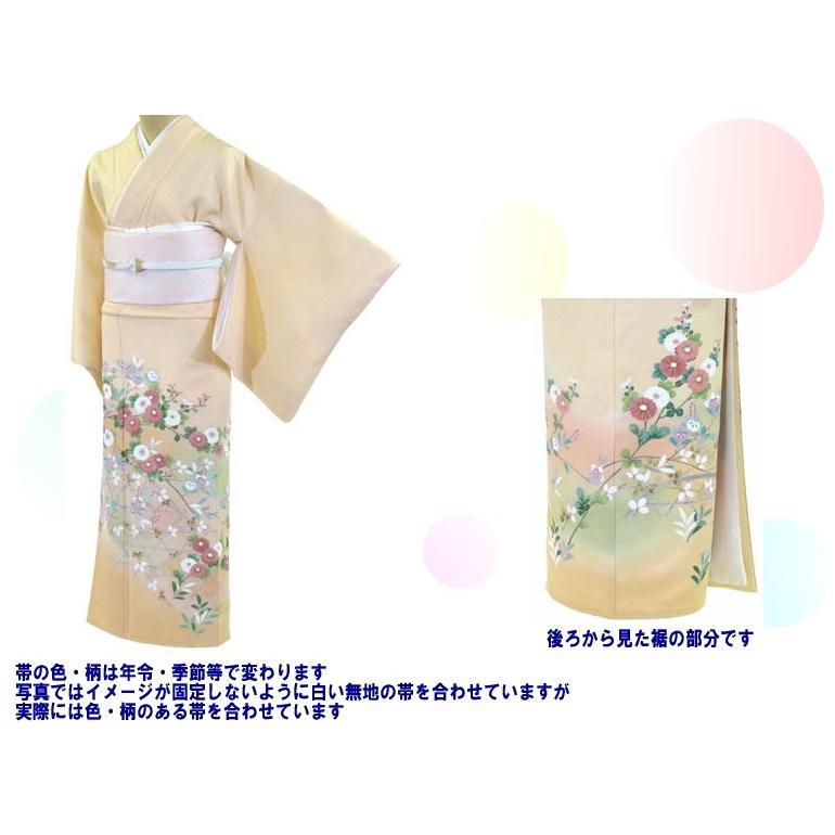 色留袖 レンタル 765番 20点フルセットレンタル 往復送料無料 kimono-world 02
