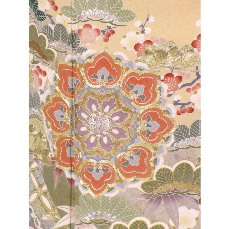 色留袖 レンタル 822番 20点フルセットレンタル 往復送料無料|kimono-world|05