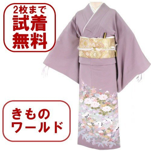 色留袖 レンタル 876番 20点フルセットレンタル 往復送料無料|kimono-world