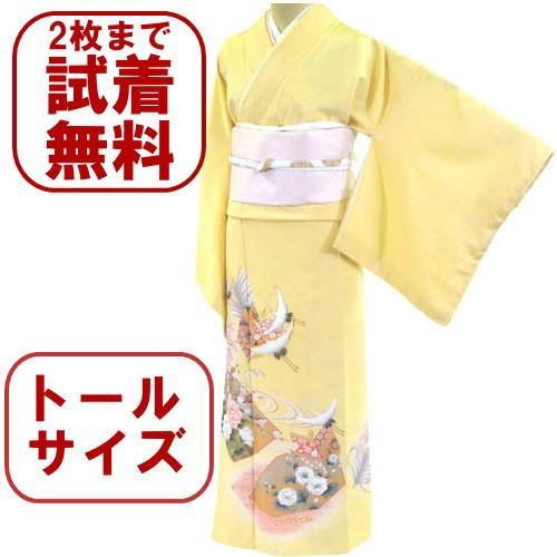 色留袖 レンタル 905番 20点フルセットレンタル 往復送料無料|kimono-world