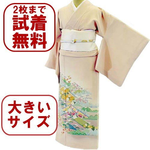 色留袖 レンタル 923番 20点フルセットレンタル 往復送料無料|kimono-world