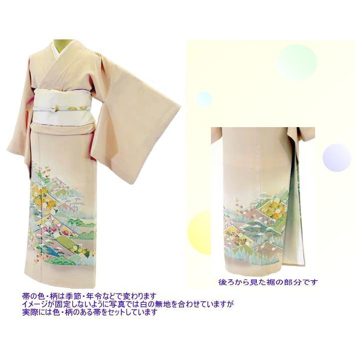 色留袖 レンタル 923番 20点フルセットレンタル 往復送料無料|kimono-world|02