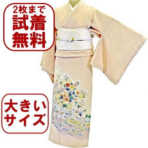 色留袖 レンタル 924番 20点フルセットレンタル 往復送料無料 kimono-world