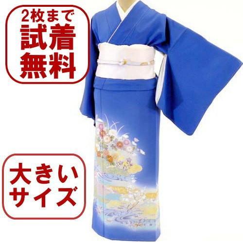 色留袖 レンタル 927番 20点フルセットレンタル 往復送料無料 kimono-world