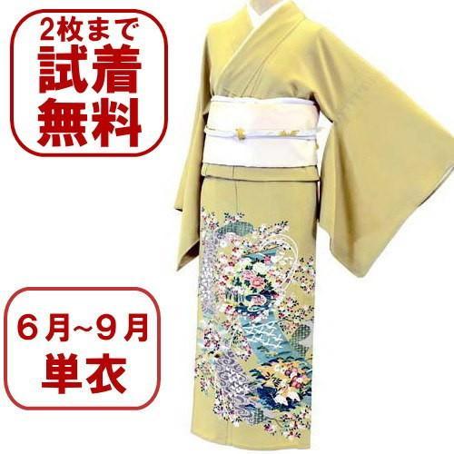 色留袖 レンタル 944番 20点フルセットレンタル 往復送料無料|kimono-world