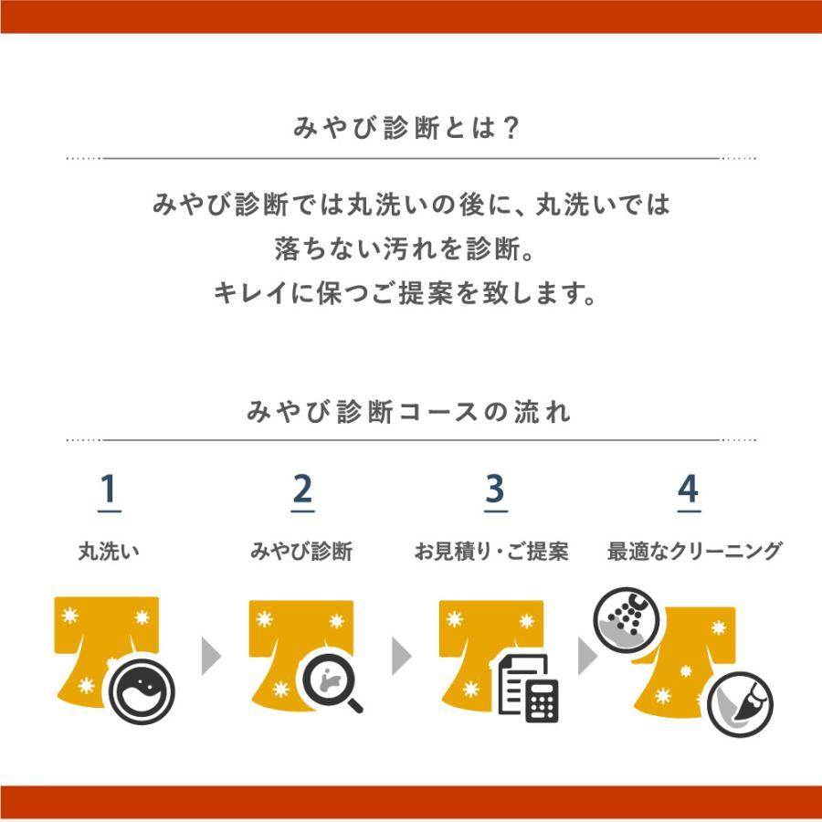 着物 クリーニング 宅配 着物2点セット(着物+帯) みやび診断付 雅ネット|kimonoya-miyabi|06