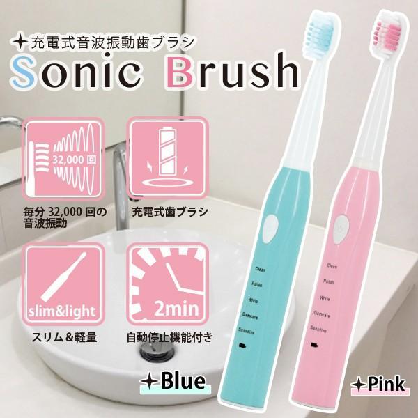 保証 超音波電動歯ブラシ 本体 ブラシ3本付き 口臭ケア###充電式歯ブラシ076### コンパクト 防水 定番から日本未入荷
