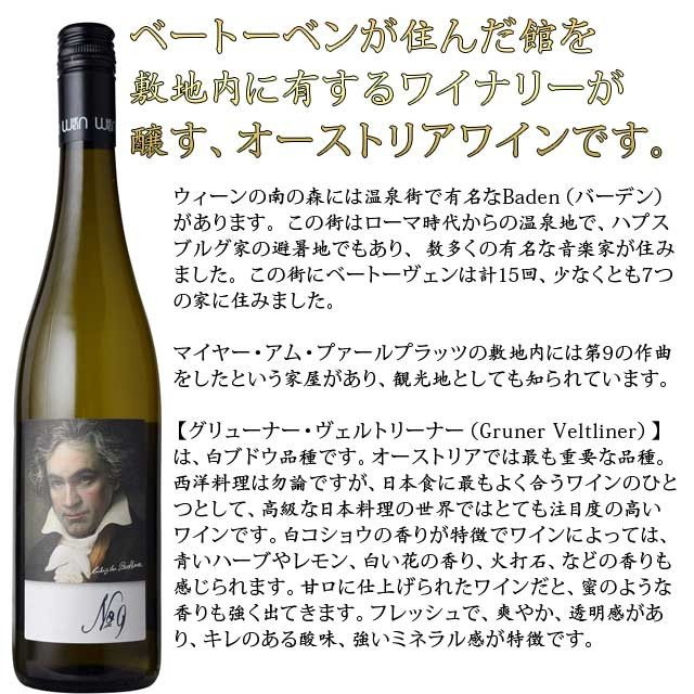 グリューナー・ヴェルトリーナー ベートーベン 第九 ラベル 750ml白 オーストリア kinko-wine 02