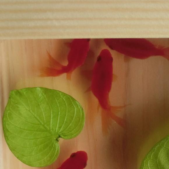 還暦 結婚 プリザーブドフラワー 樹脂 金魚 男性 女性 インテリア 扇 ハンドメイド 琉金 3D金魚 雑貨 手作り プレゼント付き