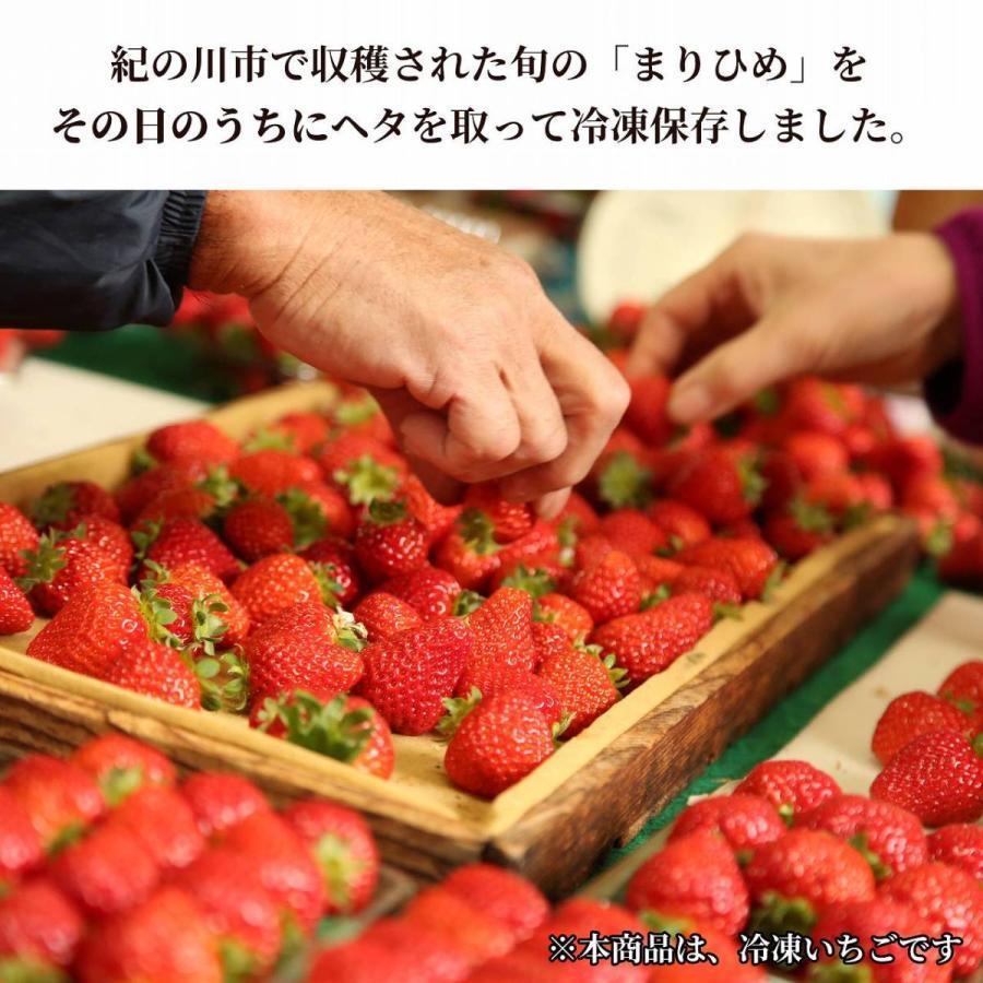 冷凍いちご まりひめ ジャム スムージー [送料無料] 和歌山県産|kino-farm|06