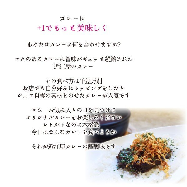 近江屋清右衛門レトルトカレー|kinse-kyo-tsukemono|03