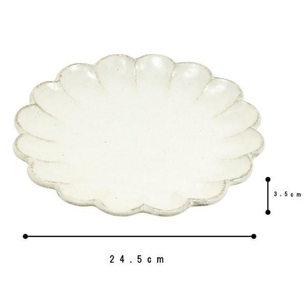 大皿 陶器 人気 リンカ りんか 小兵 24プレート 白練 食器 おしゃれ 美濃焼 日本製|kintouen|05
