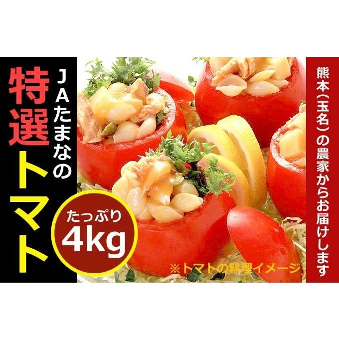 【送料無料】生産量日本一の九州熊本県のトマト★JAたまな特選トマト一箱入4kg!入り|kiramekitamana