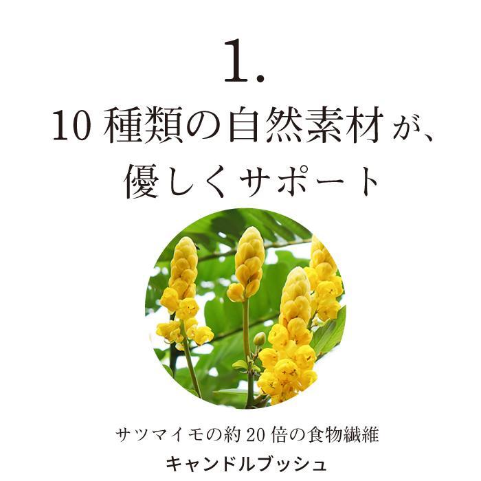 キレイデスリムティー(30包2袋)ダイエット キャンドルブッシュ プーアル茶  ダイエット茶 ダイエットティー 送料無料 キレイデラボ|kireidelab|08