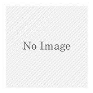 オンリーワン オプション ローボルトトランス15W KS1-C152A  【表札 サイン】