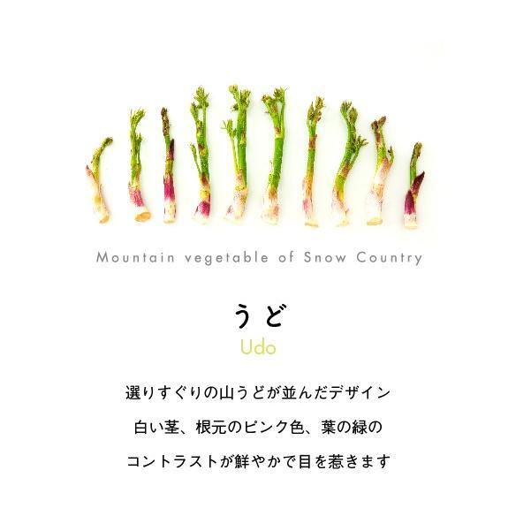 うどトート|kiru-sansai|03