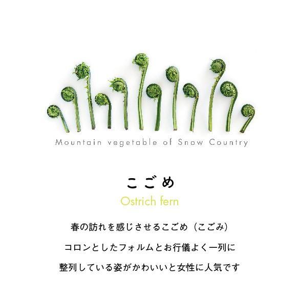 こごめTシャツ ホワイト kiru-sansai 02