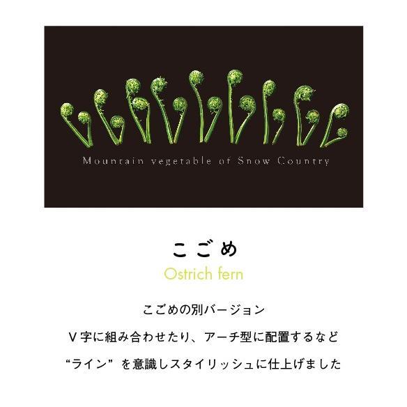 こごめTシャツ ブラック|kiru-sansai|02