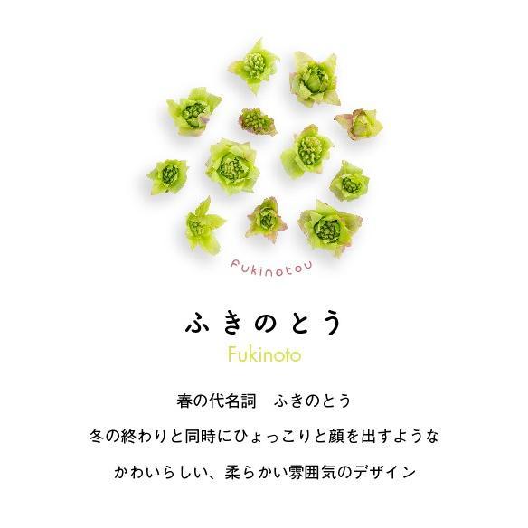 ふきのとうTシャツ ホワイト|kiru-sansai|02