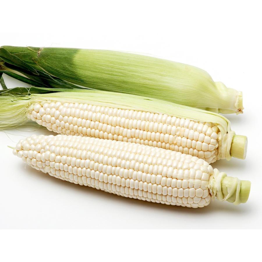方 食べ 白い トウモロコシ