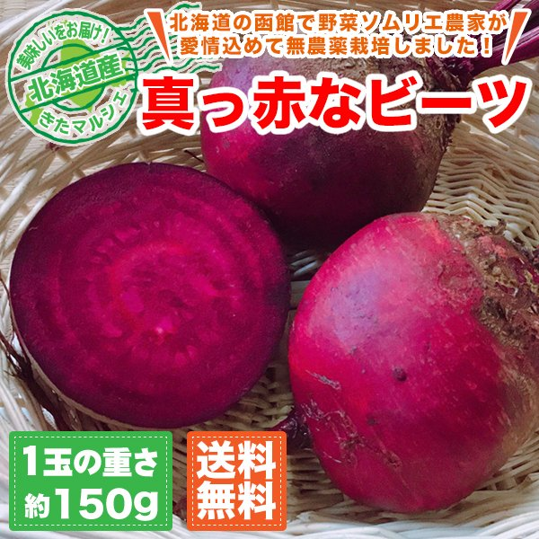 北海道産 真っ赤なレッドビーツ 10玉セット 1玉約150g 送料無料/北海道で野菜ソムリエの資格を持つ農家さんが無農薬で栽培しました。|kita-marche