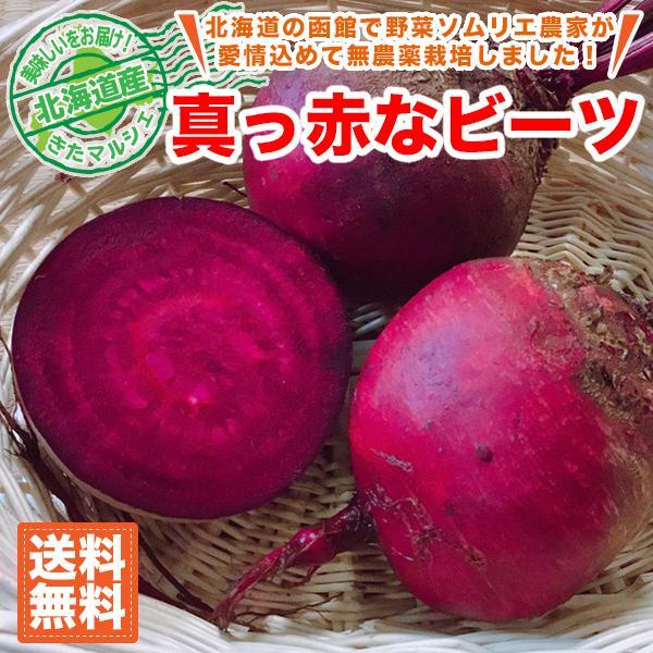 北海道産 真っ赤なレッドビーツ 20玉セット 1玉約150g 送料無料/北海道で野菜ソムリエの資格を持つ農家さんが無農薬で栽培しました。 kita-marche