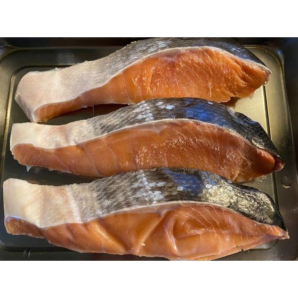 天然時鮭(ときしらず)切身3切れセット(目安1切れ100g前後)〔E〕北港直販☆しゃけ・シャケ・ときしゃけ|kitachokuhan