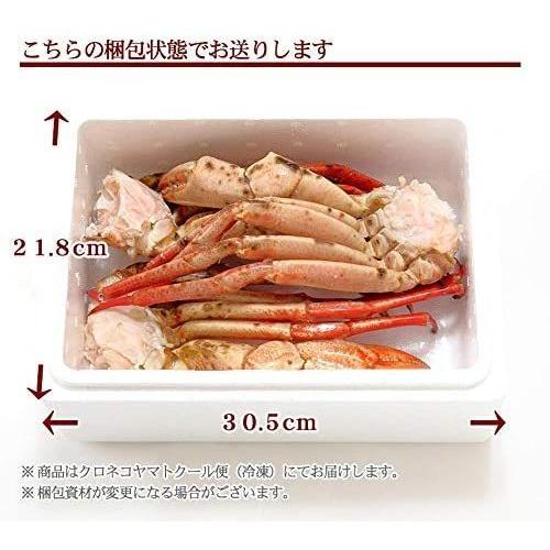 かに カニ 蟹 まるずわいがに 脚 1kg 3肩前後入 ズワイガニ 訳あり 送料無料|kitauroko|05