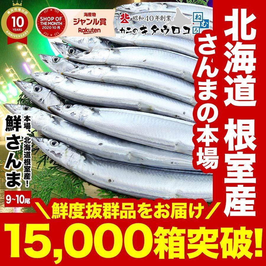 さんま 受付終了 本場 北海道 根室産 鮮さんま 110g前後 9から10尾入 計1kg  送料無料  同梱不可 指定日不可 魚 生さんま|kitauroko