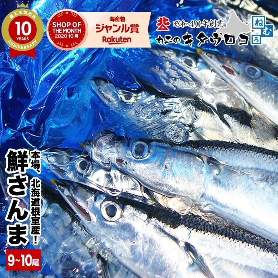 さんま 受付終了 本場 北海道 根室産 鮮さんま 110g前後 9から10尾入 計1kg  送料無料  同梱不可 指定日不可 魚 生さんま|kitauroko|07