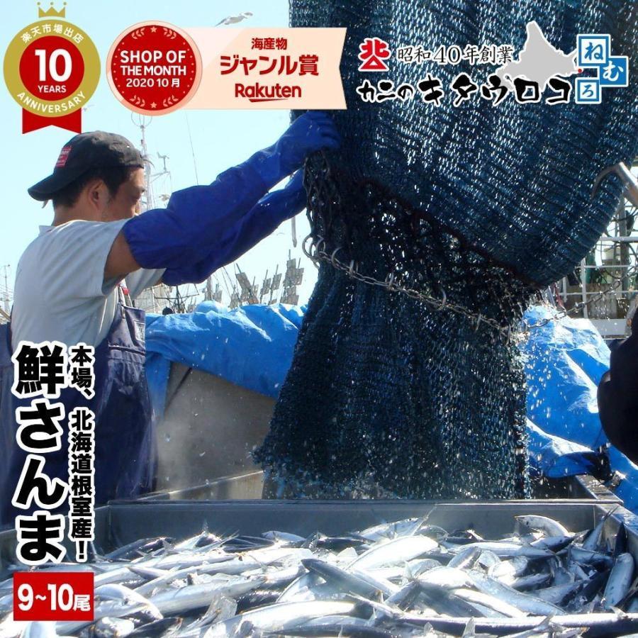 さんま 受付終了 本場 北海道 根室産 鮮さんま 110g前後 9から10尾入 計1kg  送料無料  同梱不可 指定日不可 魚 生さんま|kitauroko|08