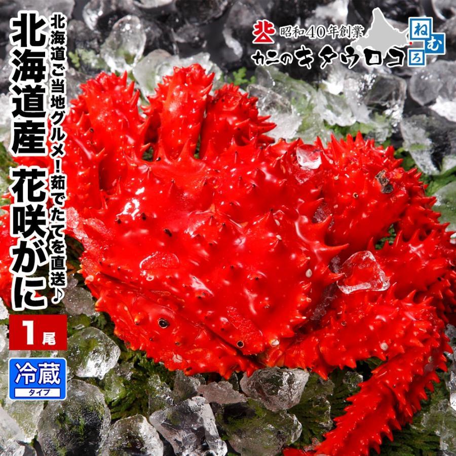 カニ 花咲がに 北海道産 茹でたて直送 350gから500g前後 1尾入 かに 蟹 花咲ガニ ご当地グルメ kitauroko