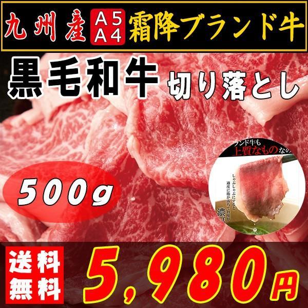 肉 焼肉 焼き肉 黒毛和牛 すき焼き 切り落とし 霜降り 九州産 A4・A5等級 500g 〔A冷凍〕