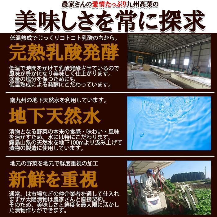高菜 たかな 九州たかな 漬物 ふりかけ おかず ご飯のお供 食品 送料無料 お取り寄せ 日本製 国産 しょうゆ漬 450g(150g×3) 〔メール便出荷〕 kiwami-honpo 05