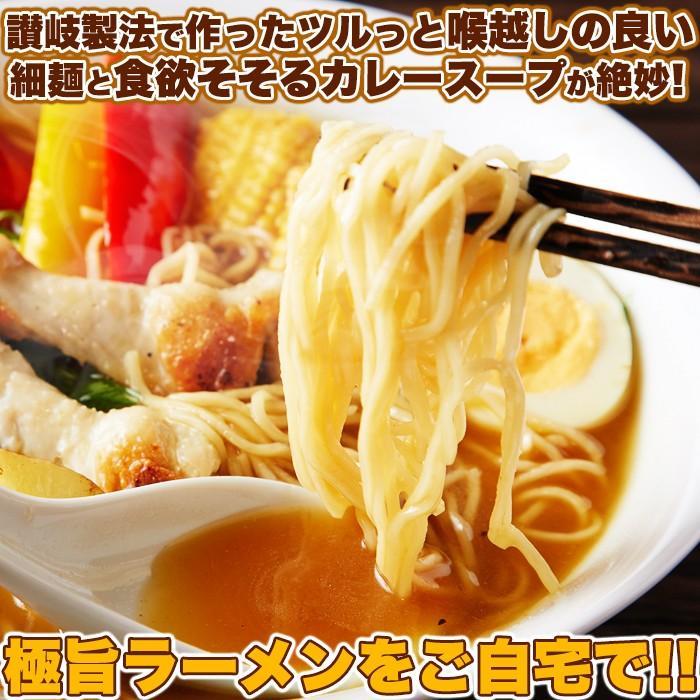 スープカレーらーめん スープ付き 生麺 ポイント消化 送料無料 食品 お試し セール 4食(90g2食×2袋)〔メール便出荷〕|kiwami-honpo|05