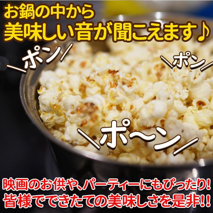 ポップコーン 豆 お菓子 おつまみ バタフライタイプ 送料無料 とうもろこし 720g(90g×8袋) 〔メール便出荷〕|kiwami-honpo|05