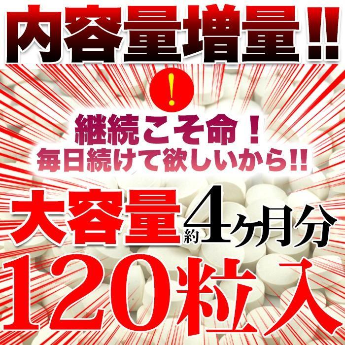 ローズ サプリ ローズビューティー 国産 日本製  サプリメント 送料無料 大量 ポイント消化  約4ヵ月分 〔120日分×1袋〕 〔メール便出荷〕|kiwami-honpo|03
