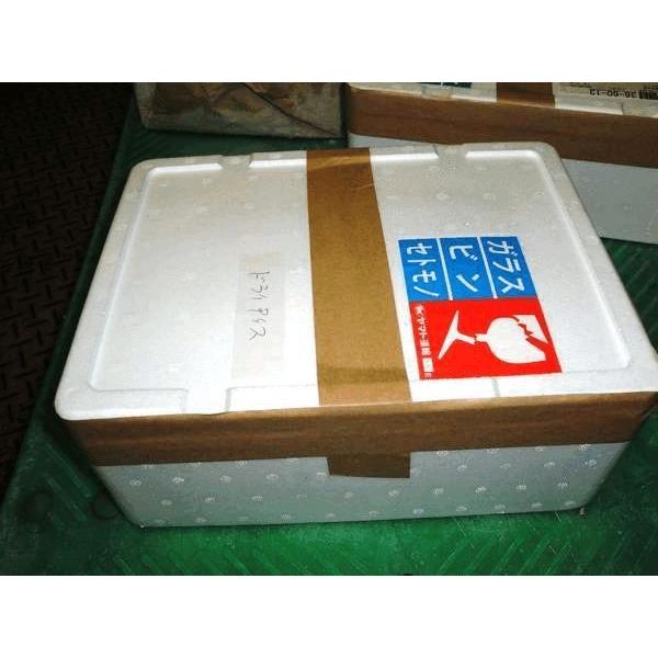 ドライアイス 5kg 常温便 発泡スチロール 箱入 実験 保冷 用 日付指定|ko-ricom|02
