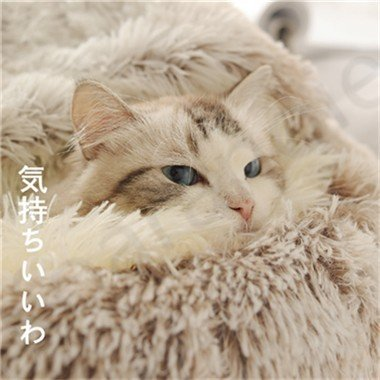 ペットハウス ペットベッド 猫ベッド 猫用ベッド ネコベッド ペット用品 暖かい ベッド ねこ用ベッド おしゃれ テント型 冬用|koaranoie|05