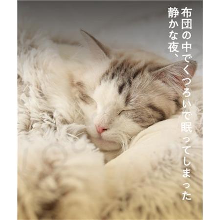 ペットハウス ペットベッド 猫ベッド 猫用ベッド ネコベッド ペット用品 暖かい ベッド ねこ用ベッド おしゃれ テント型 冬用|koaranoie|06