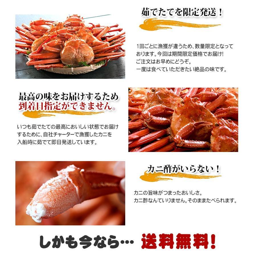 【送料無料】日本海産 訳あり 茹でたて紅ズワイ蟹 2kg【かに カニ 蟹】|kobari-kaniya|04