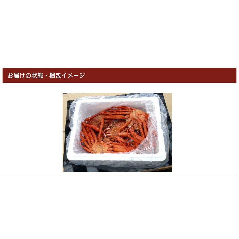 【送料無料】日本海産 訳あり 茹でたて紅ズワイ蟹 2kg【かに カニ 蟹】|kobari-kaniya|07