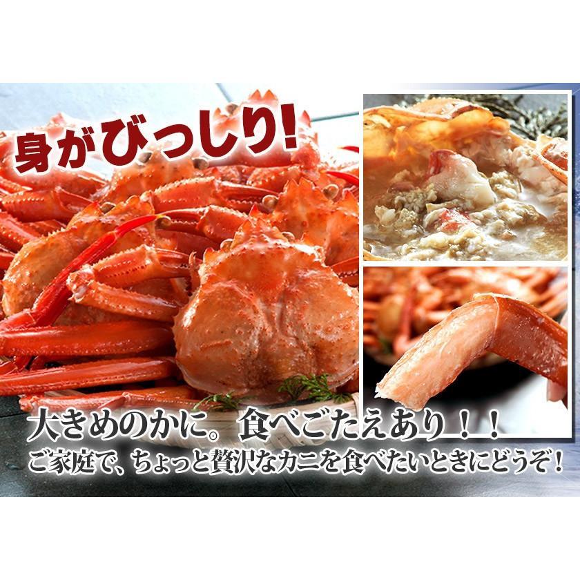 【緊急企画】ステイホーム特別価格!茹でたて紅ずわい蟹 詰め合わせ 総量3kg kobari-kaniya 02